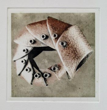 sharon mcjannet - shrimp - photo etching